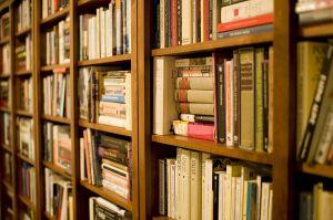 800px-Bookshelf